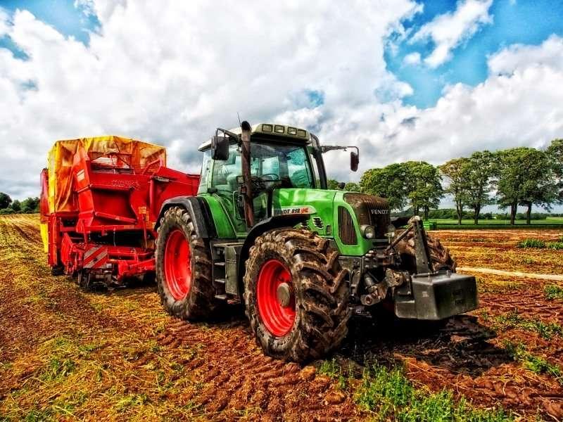 Начинающим дачникам: как упростить работу на огороде