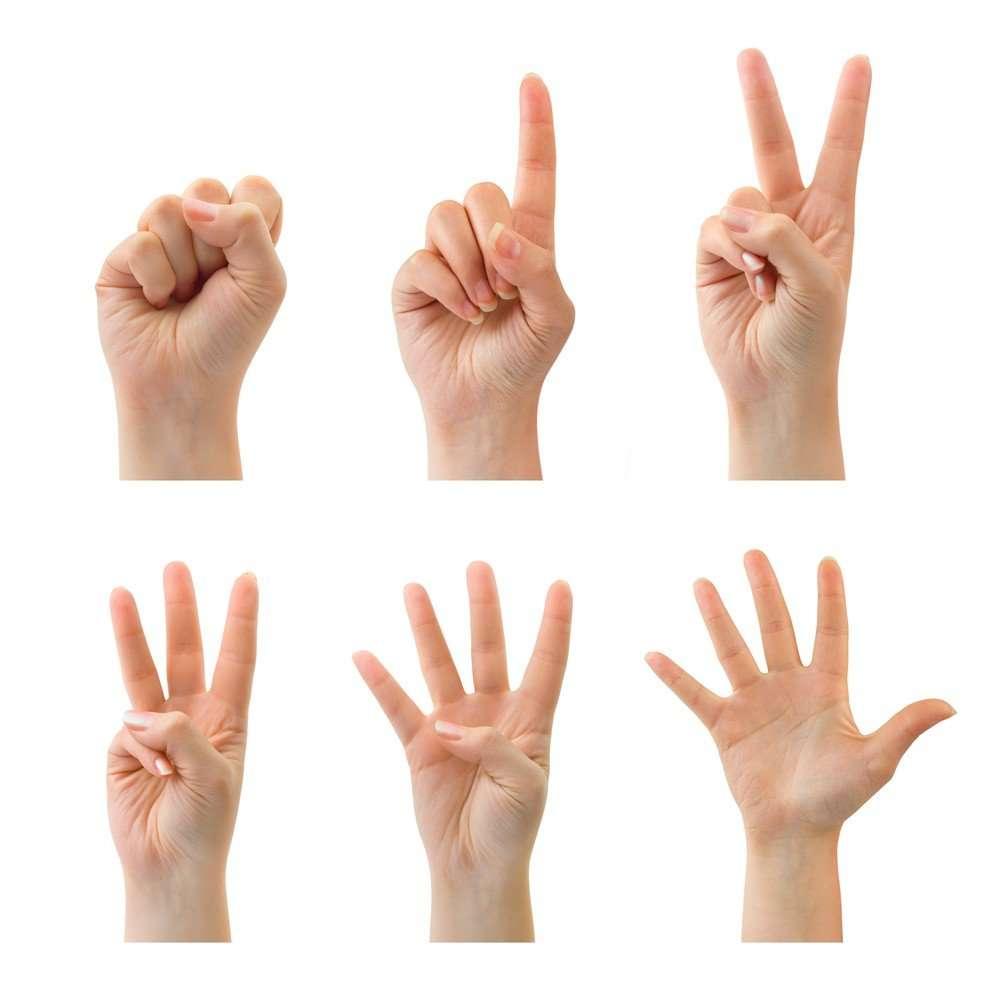 Встряхни свой мозг! Практические техники пальчиковой гимнастики, которые сможет выполнить каждый
