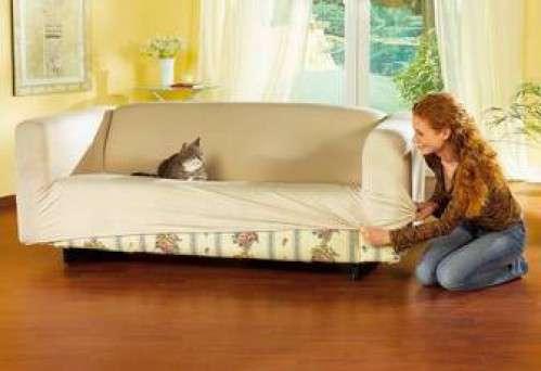 Чем освежить диван в домашних условиях 33